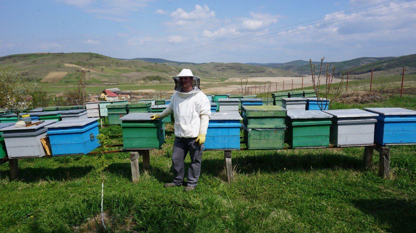 Cercetare privind sectorul cooperativelor agricole în România