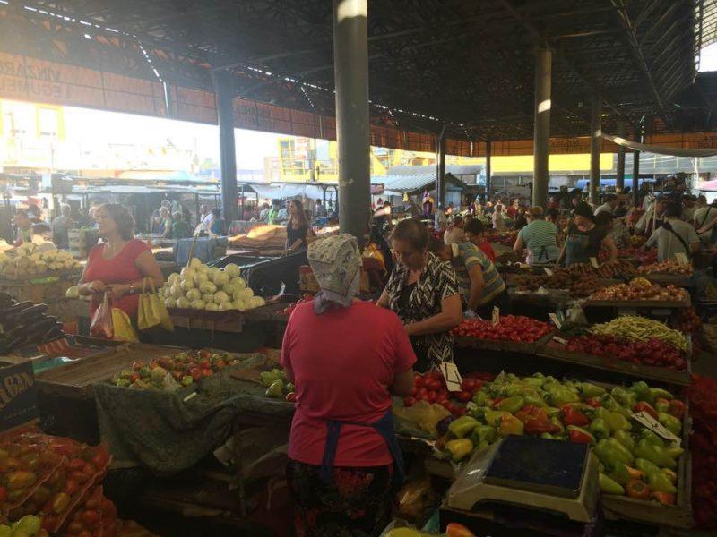 Implementarea Acordului de Liber Schimb în Republica Moldova-sectorul agricol