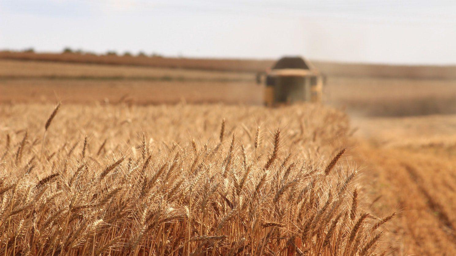 Asocierea – element cheie pentru dezvoltarea agriculturii în România