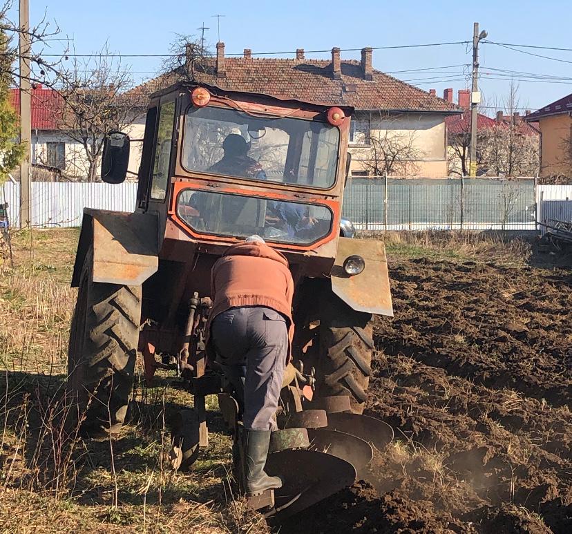 Cum asigurăm securitatea alimentară a României pe timp de pandemie. Rolul fermelor mici și mijlocii